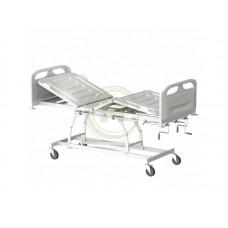 Кровать медицинская для лежачих больных КМФТ171 МСК-3171