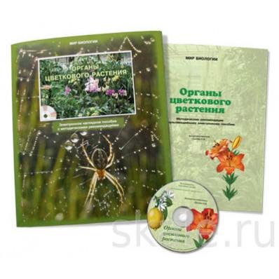 Электронное наглядное пособие Ботаника. Органы цветковых